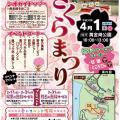 春の風物詩◎黄金崎さくらまつり【4/1※小雨決行】
