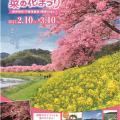 【2/10-3/10】第19回 みなみの桜と菜の花まつり※今季終了