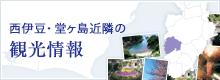 西伊豆・堂ヶ島近隣の観光情報